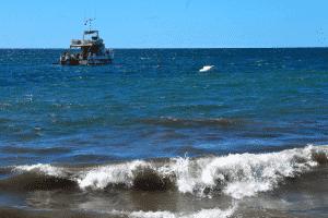Expertise judiciaire en milieu maritime et sous-marin